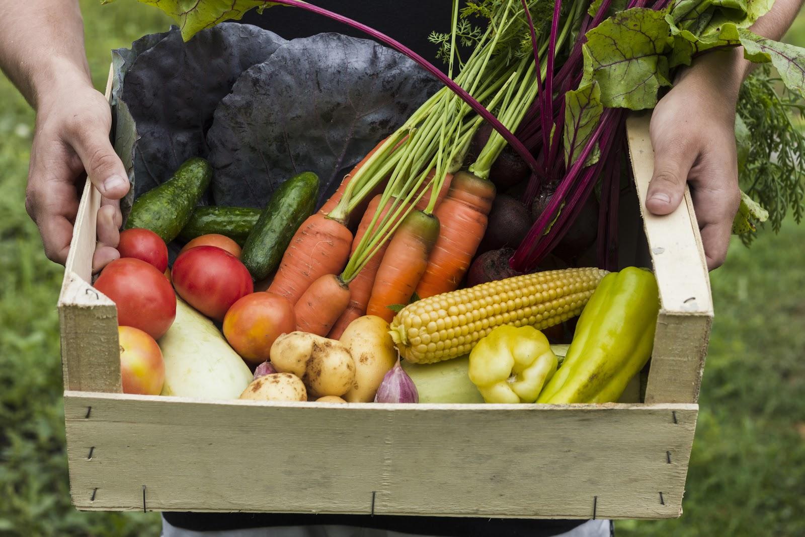 Україна посіла 2 місце за обсягами експорту органічної продукції до ЄС